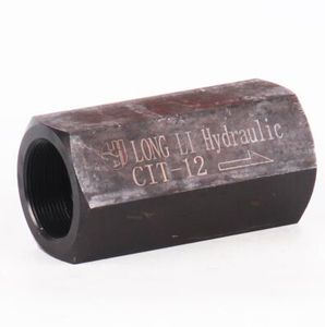 Inline check valves CIT 12